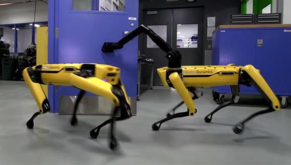 Kapıyı açan yapay zekalı sarı robot (VİDEO)
