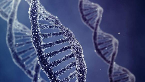Vücudunda 3 ayrı DNA taşıyor!
