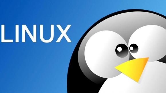 Kullanımı kolay, Windows alternatifi Linux Dağıtımları
