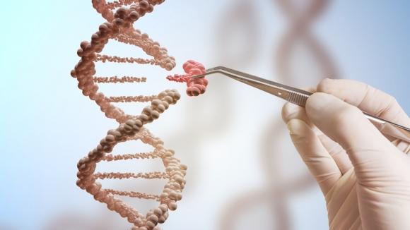 Genetik devrim sandığımızdan daha yakın olabilir!