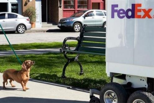 FedEx'in merdiven çıkabilen teslimat robotları!