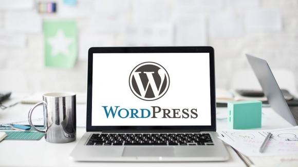 10.000'den fazla WordPress kullanıcısı tehlike altında!