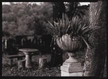 il cavallone garden