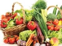 peluang-usaha-bisnis-sayuran
