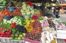 fruits galore!