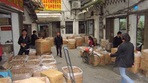 The mushroom mafia in China :)