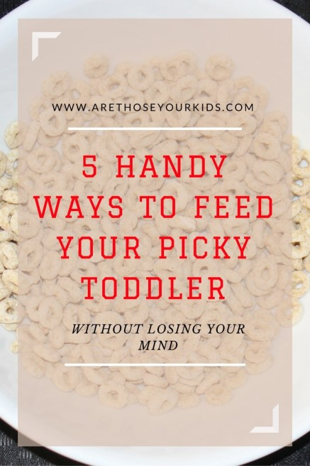 5 Handy Ways to Feed Your Picky Toddler Without Losing Your Mind