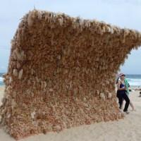 Sculptures by the Sea - Bondi Beach a Tamarama Beach