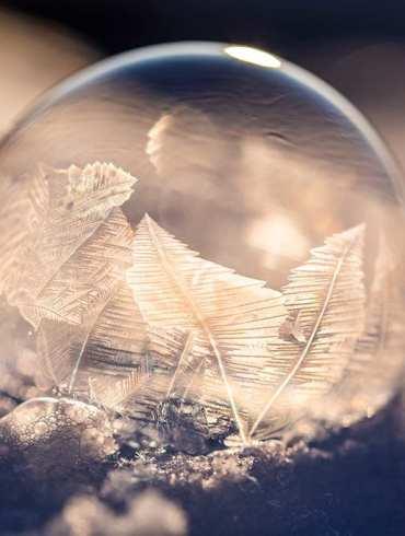 frozen soap bubble in winter