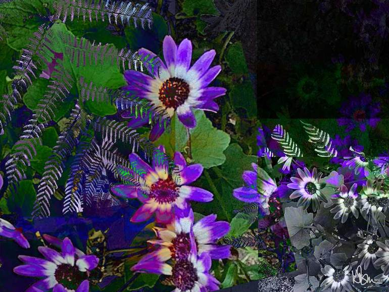 collage of purple flowers