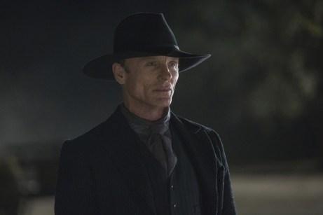Westworld HBO - Ed Harris