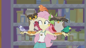 fluttershy_and_her_new_friends