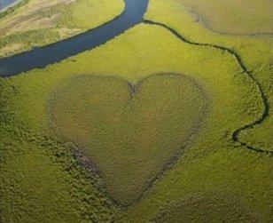 altres-4-corazones-naturaleza-11