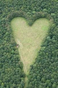 altres-4-forma-de-corazon-naturaleza