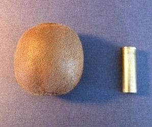 Kiwi och patronhylsa till ammunition
