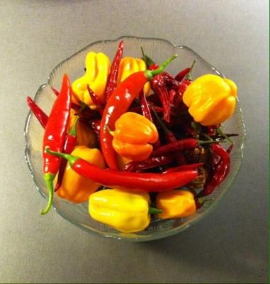 Skål med blandad chili. Ju mindre, desto starkare? Chilikonst.