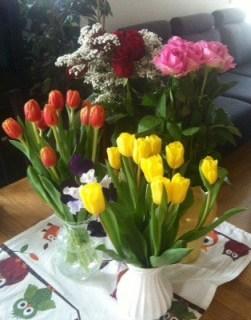 Blommor. Tulpaner och rosor. Presenter!