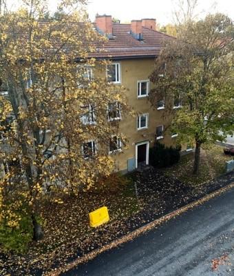Höstlöv på trottoaren. I går blåste de löv, och så här mycket har fallit sedan dess. Onödig kostnad!