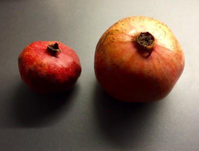 Ett stort granatäpple jämfört med ett normalstort. Jag känner mig rik!