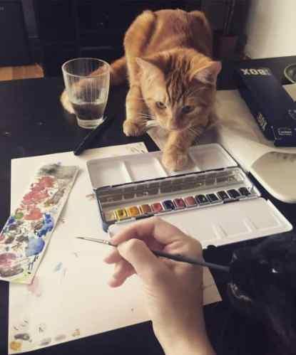 Katter hjälper till att måla akvarell, Fjodor och Finkel
