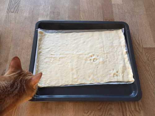 Katt och tassavtryck i deg, pizza