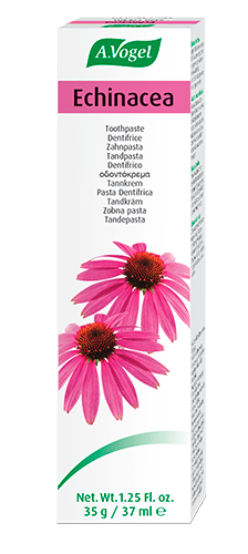 dentaforce-echinacea-a-vogel