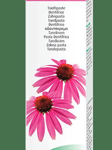dentaforce-echinacea-a-vogel