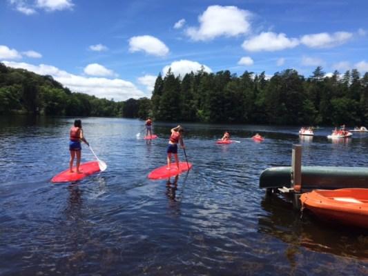 paddle 2016