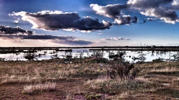 Ciudad - Laguna de los patos 01