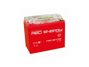 RE Energy DS 1209