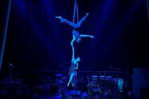 Aerial Straps Act - Corporate Entertainment - Argolla Show