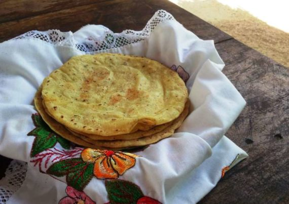 tortilla6