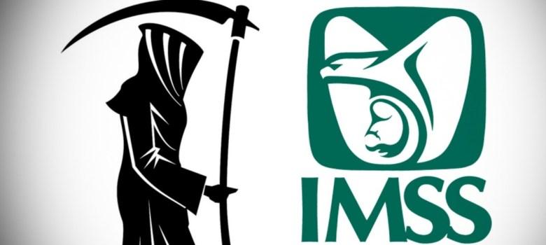 imss mm