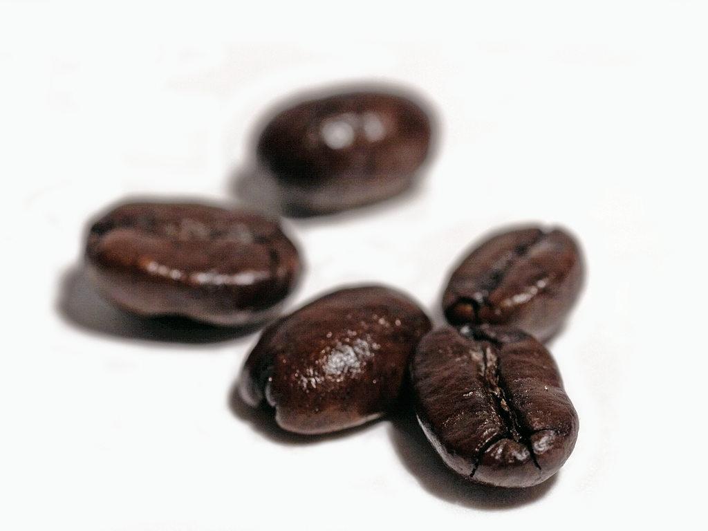 coffee_01_bg_031106