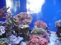 Oahu June 25 2012 076
