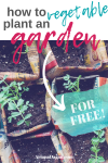 How I Built a 72 Foot Garden For Less Than $25, and How You Can To!