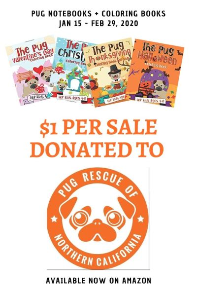 Animal Rescue Fundraising Idea