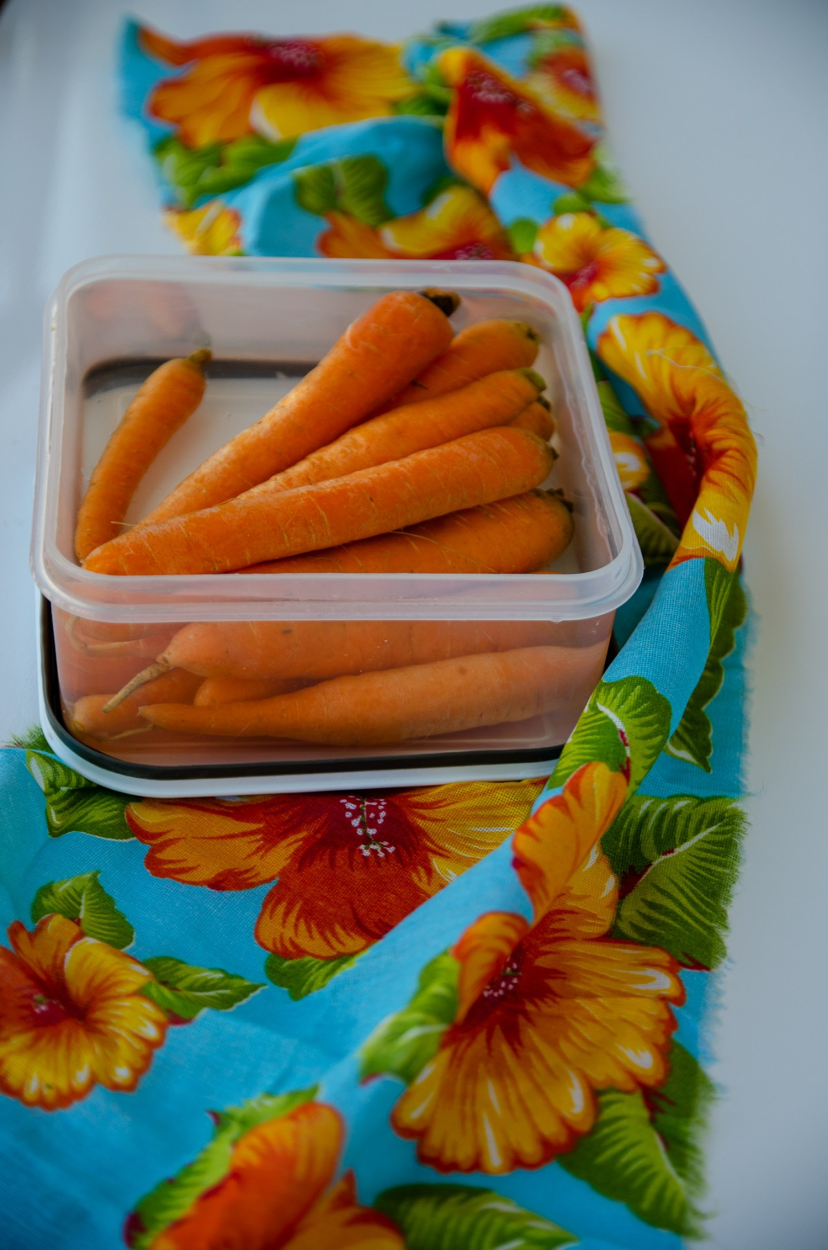cenouras frescas submersas na água para conservar melhor, a vasilha com cenouras cobertas por água esta sobre um pano florido azul e amarelo