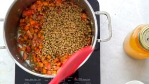 lentilha canadense para a sopa de lentilha