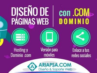 diseño-de-páginas-web-guadalajara-jalisco-mexico-ariapsa-diseño-y-soporte-web