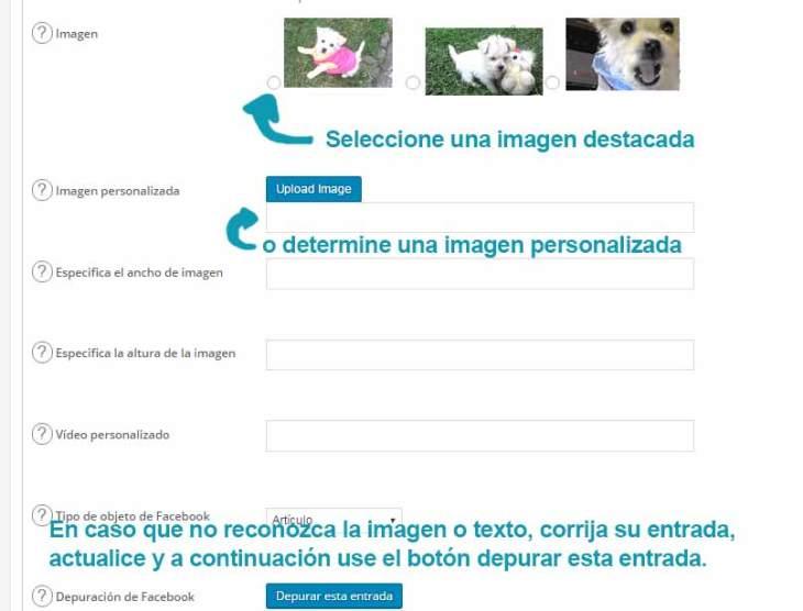 corregir-la-información-de-una-entrada-de-wordpress