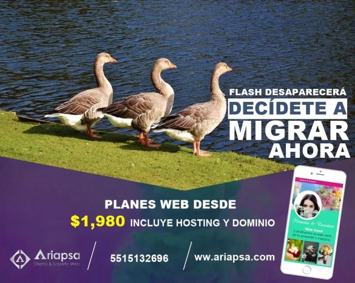 Migrar mi sitio web hecho en flash a nuevas tecnologías