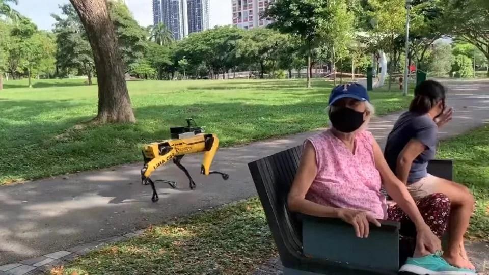 el-terrorifico-perro-robot-que-utiliza-singapur-para-mantener-la-distancia-social
