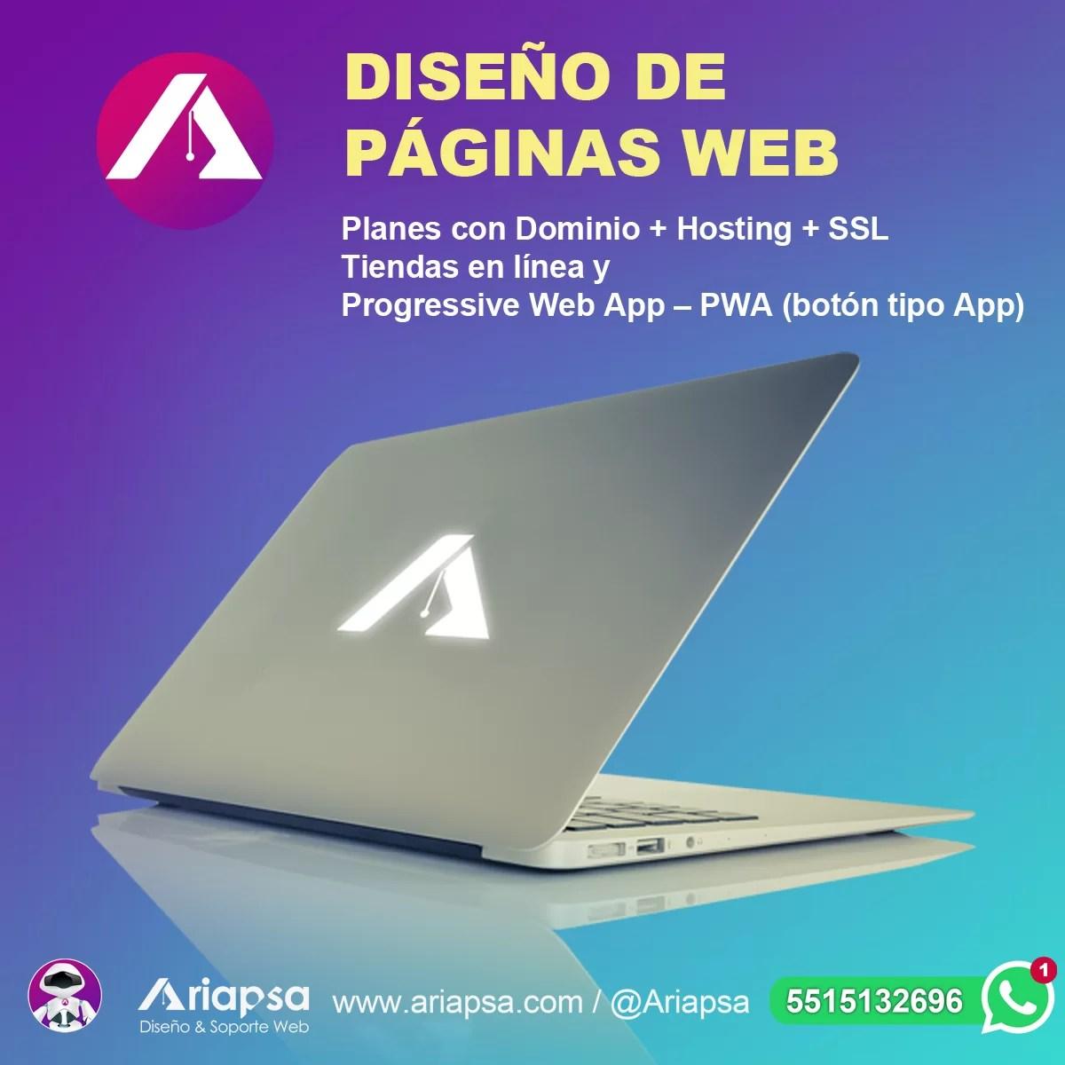 Diseño web México Ariapsa 3A