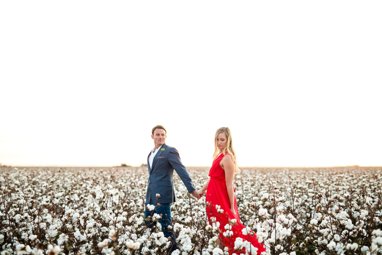 west texas cotton photos