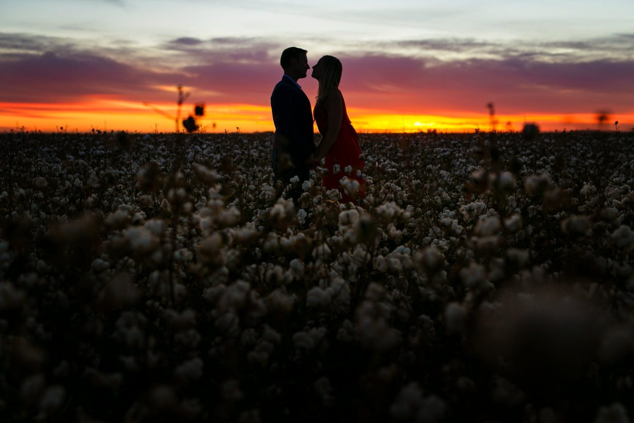 lubbock cotton photo session