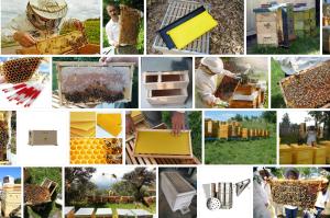 Arıcılık Malzemeleri, Arı Malzemelerinin Önemi * 2021