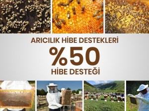 Arıcılık Hibe Destekleri, %50 Hibe Desteği ** 2021