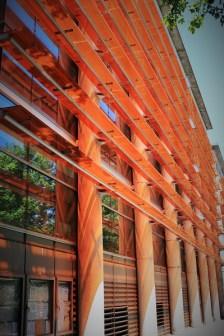 Orange Patterned building S