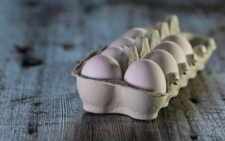 Picture of egg carton